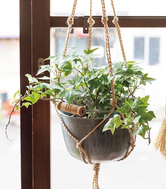 画像2: 第12回 誌上マルシェ 『天然生活』× 東京・谷中「松野屋」 かわいい見た目で働きもの 小さなトタンの豆バケツ(大・小)