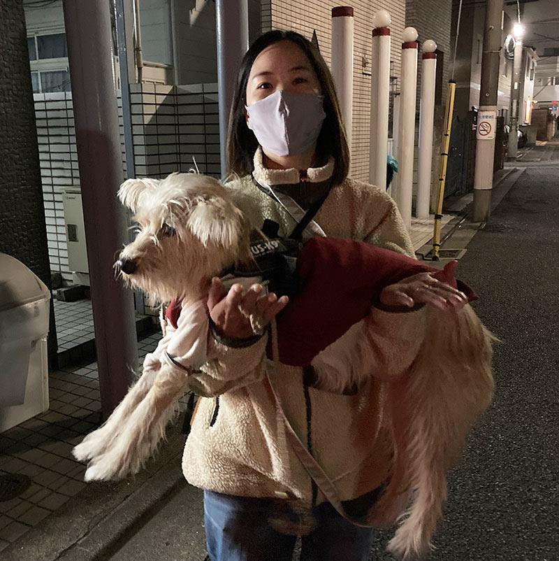 画像: 抱っこはまったく嫌がらない(嫌がるそぶりを見せないだけかも)