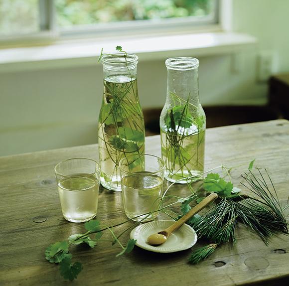 画像: 飲む野草の楽しみ
