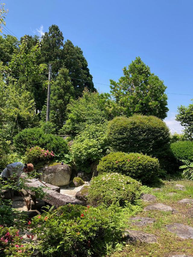 画像: 庭の池の補修が続いています。完成はいつになるのでしょうか?