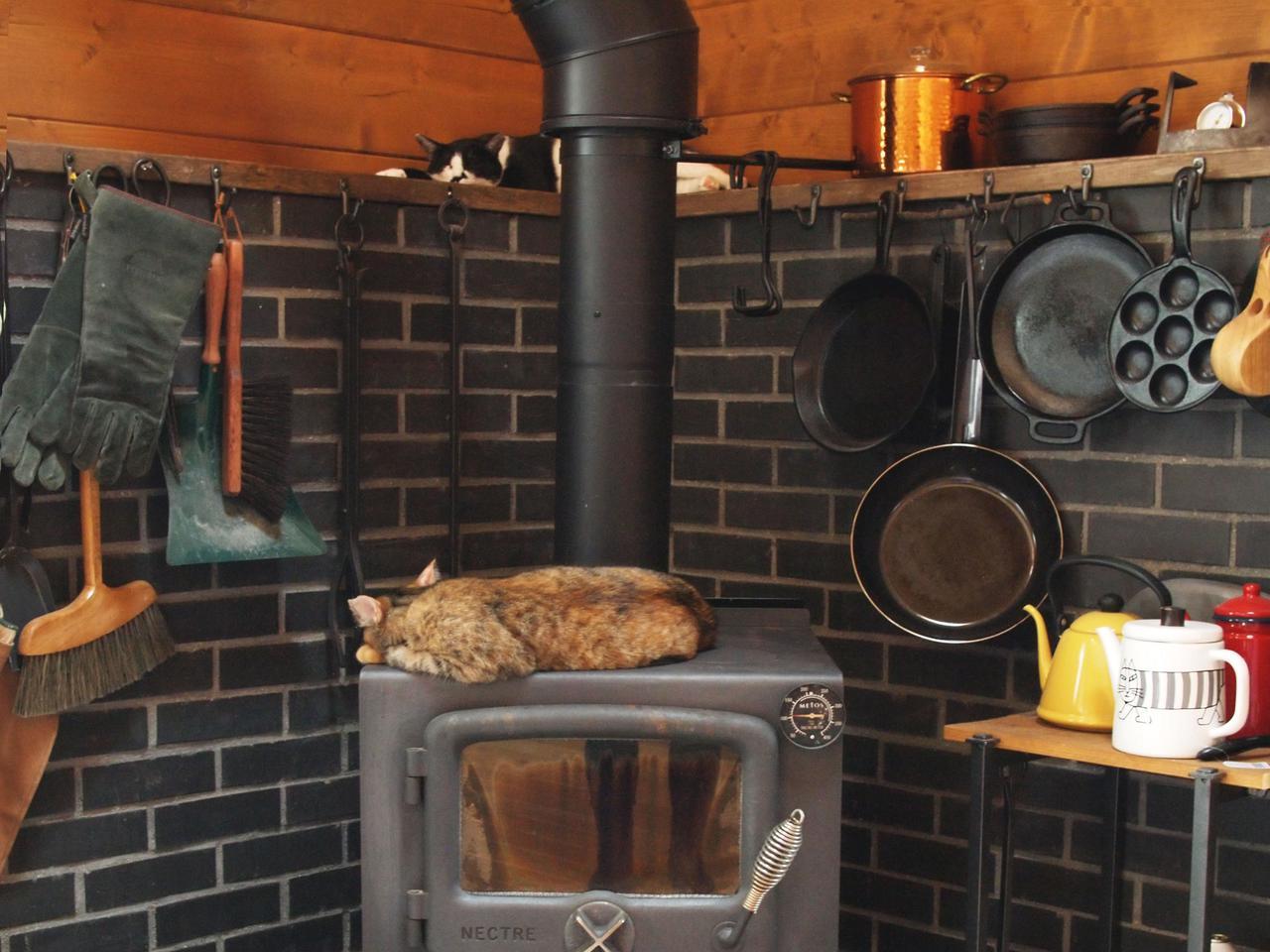 画像: 夏はひんやりしている耐火レンガと薪ストーブの二段ベッドでペターっと寝ているハナとトラ