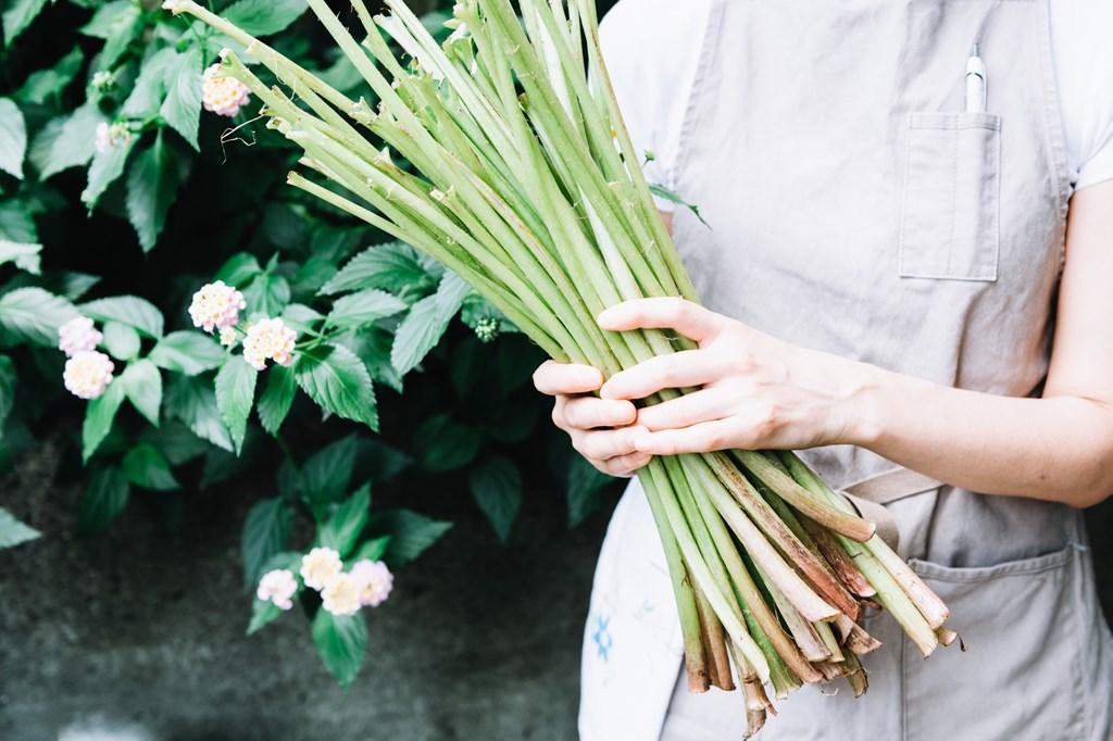 画像: 青々としたふきは、地元で梨や野菜をつくる「松屋梨園」から届いたもの