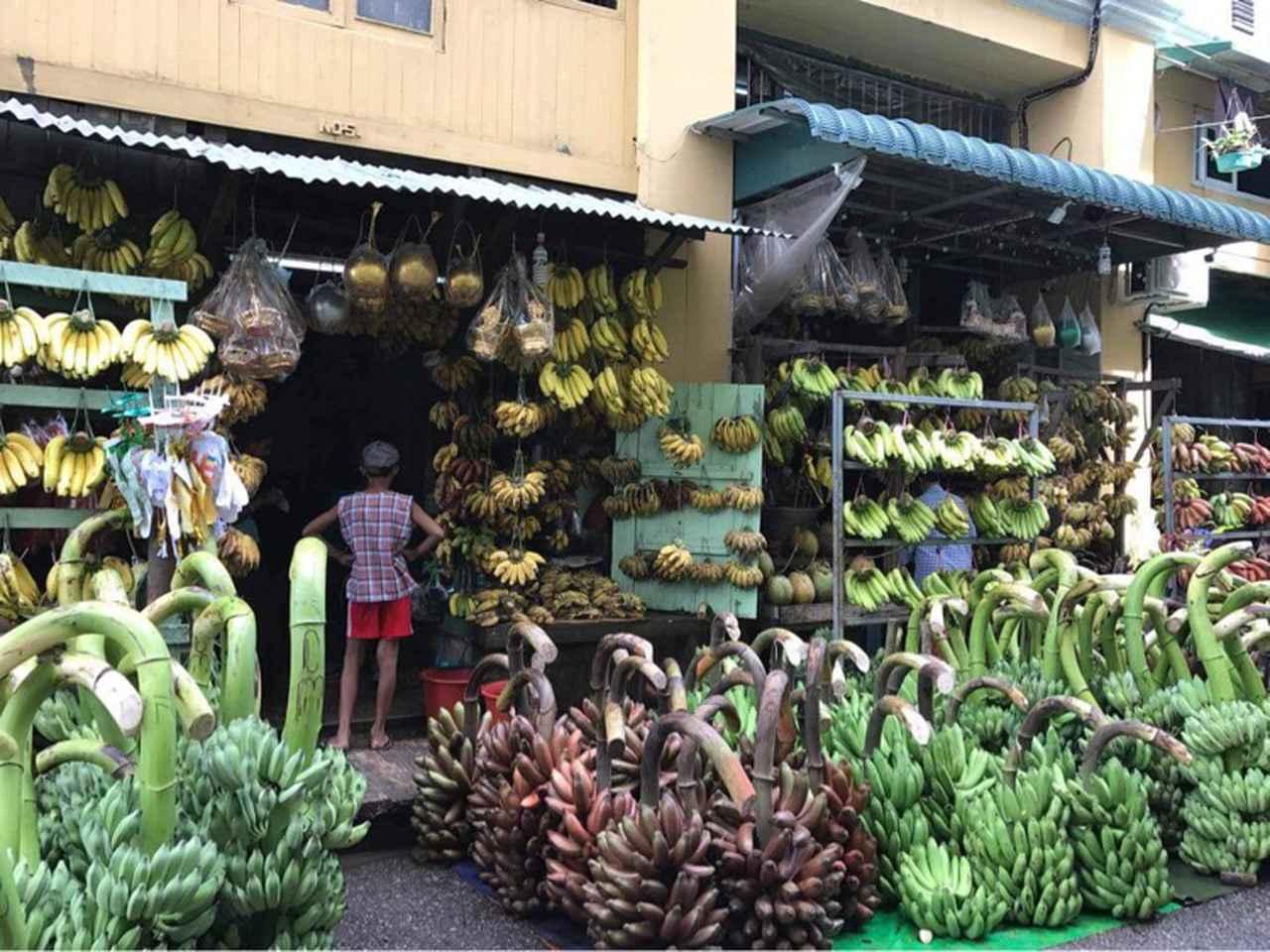 画像: 市内のバナナ専門店。大きさも色もさまざまなバナナが売っています。圧巻です