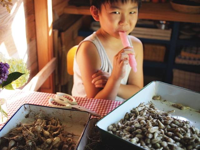 画像: 学校から帰ってくるやいなや玄関で制服を脱ぎすて、冷凍庫→小屋に直行して休憩する息子