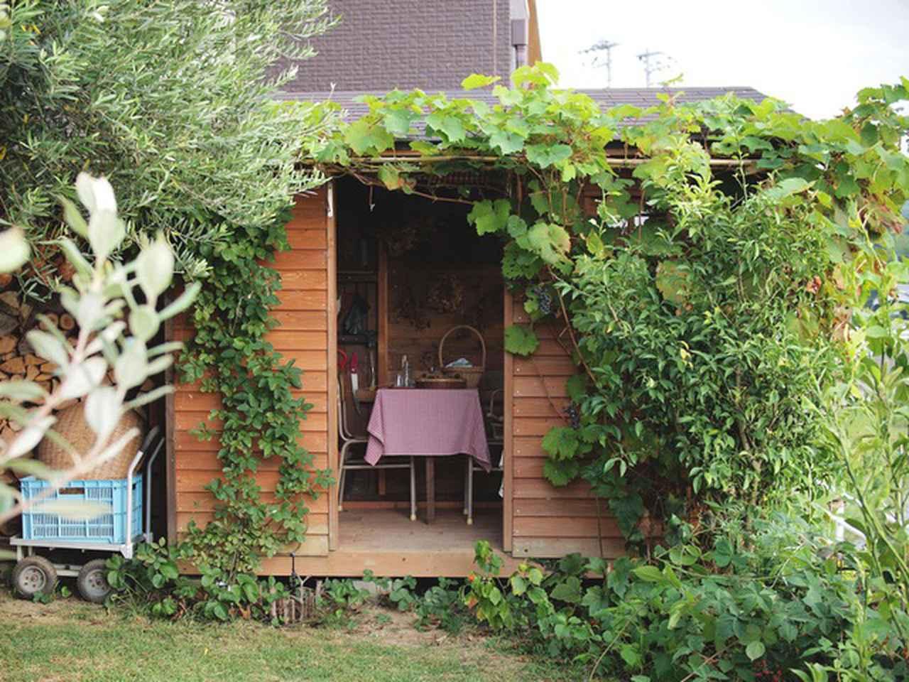 画像: 収納力を最大に増やした大きな薪棚と屋根を一体型にした小屋。外壁のぶどうとあけびの葉が茂る夏と秋は、小窓が隠れて見えません