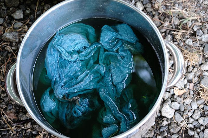 画像: 藍の生葉染めの方法