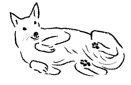 画像: 平澤まりこさん ドイツの保護犬取材記