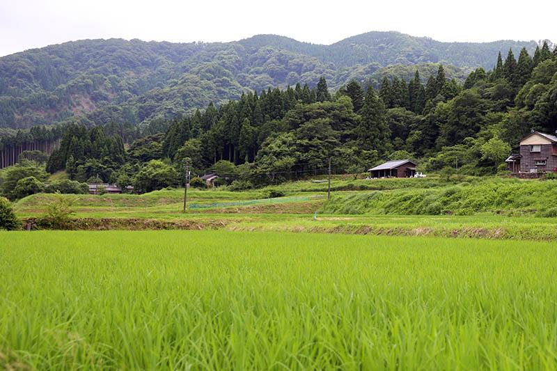 画像: 周りには、美しい田園風景が広がる