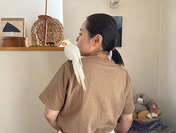 画像: 鳥も肩に登りやすい