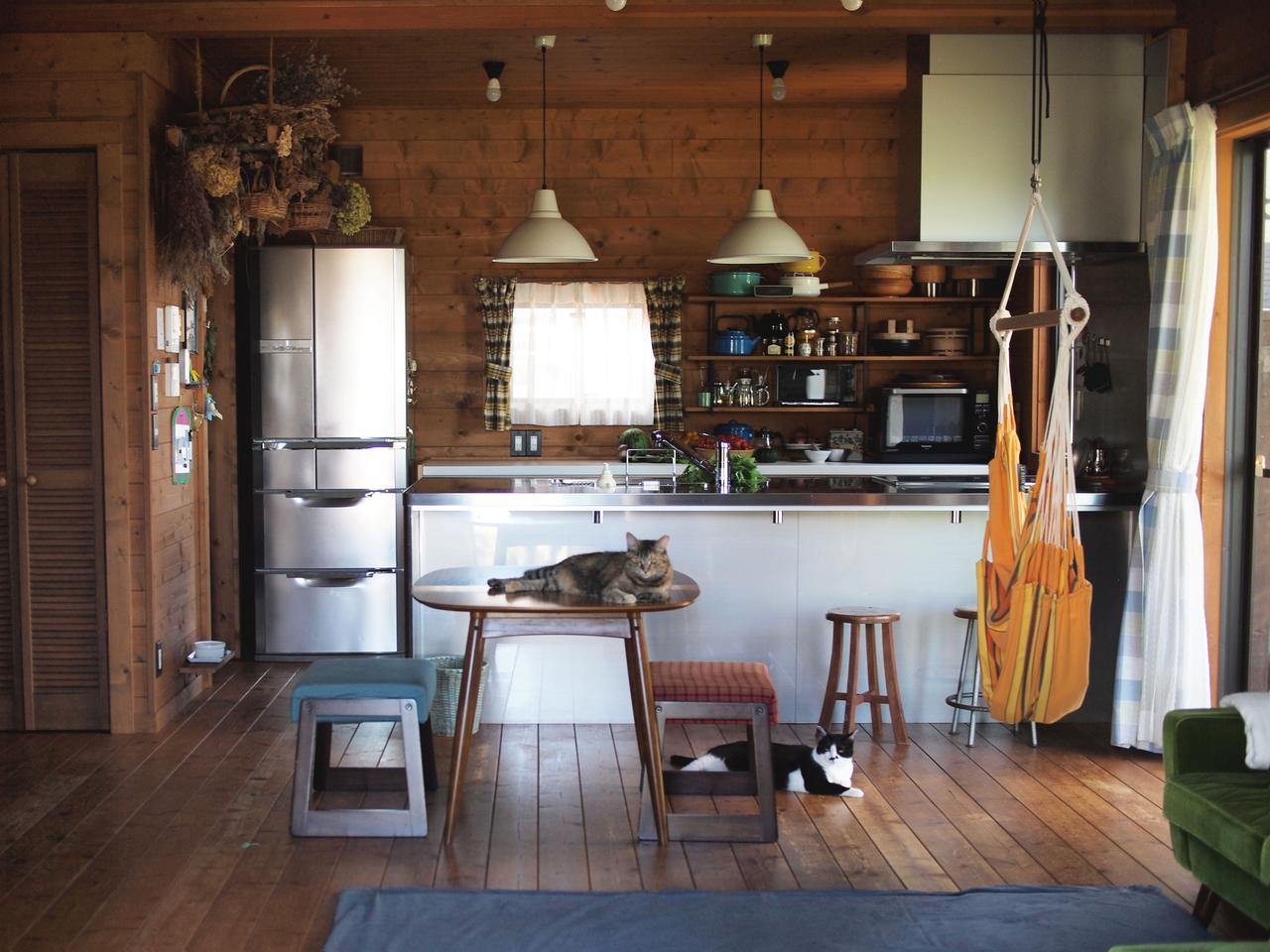 画像: 掃除がおわり、椅子を下した途端にくつろぐ、わが家のにゃんず。すーっと風が通る気持ちよい場所でのんびり