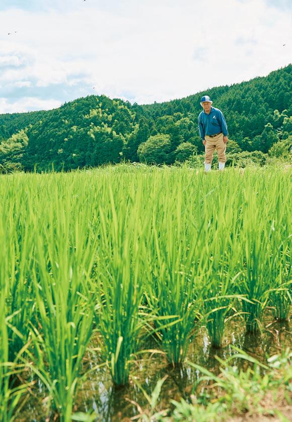 画像1: 鳥取県のまんなか。琴浦町のおいしい秋を探して