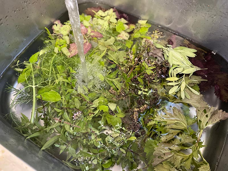 画像: ハーブは使うタイミングによって香りや風味が変わります