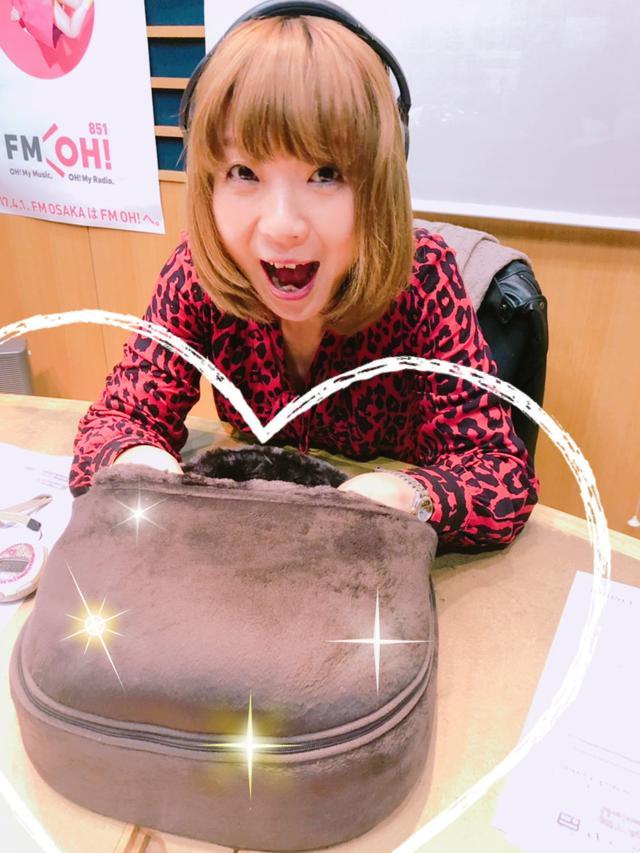 画像: 12月のJoshinからのプレゼント!