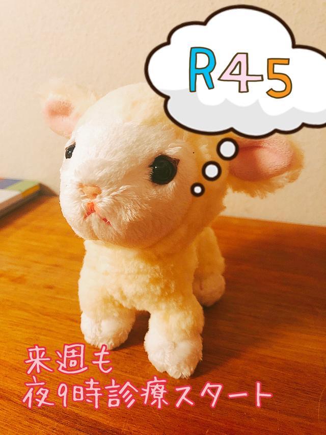 画像: 今夜の子羊さん