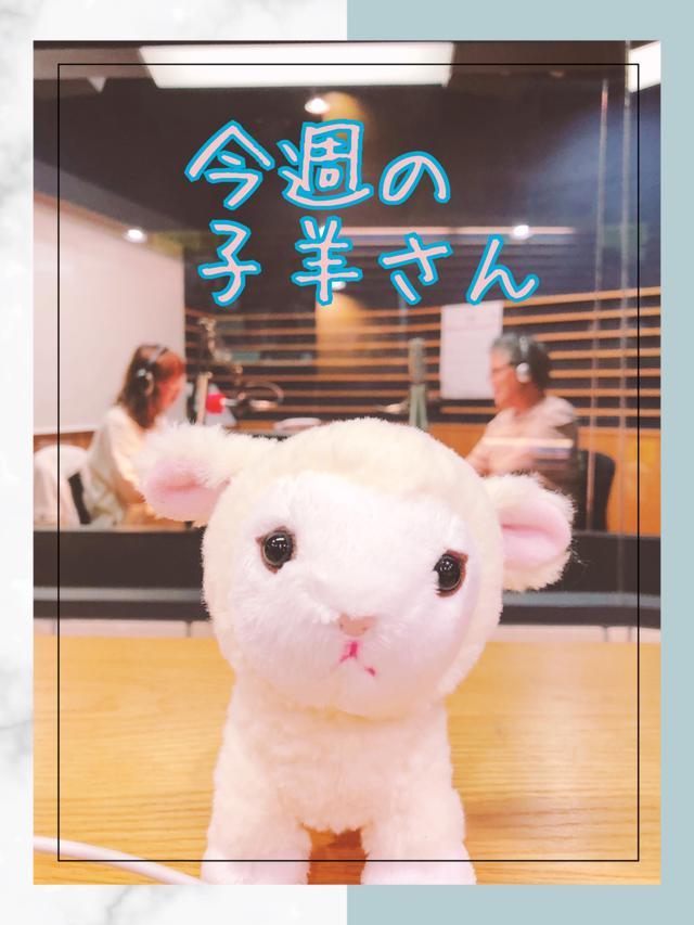 画像: 今夜の悩める子羊さん