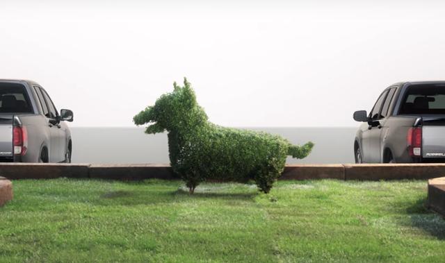 画像: モサモサの木が、一瞬でわんこになる工程も