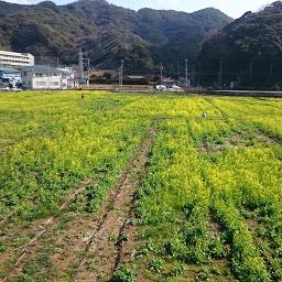 画像: 道の駅 湯の花