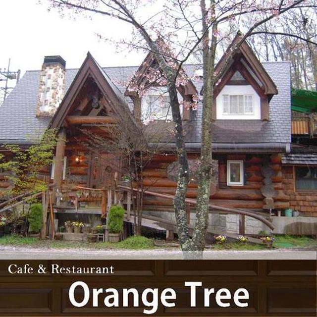 画像: こちらが「森のカフェ&レストラン オレンジツリー」さん。木の温かみを感じるおしゃれな外観のお店です。 kanape-sagami.com