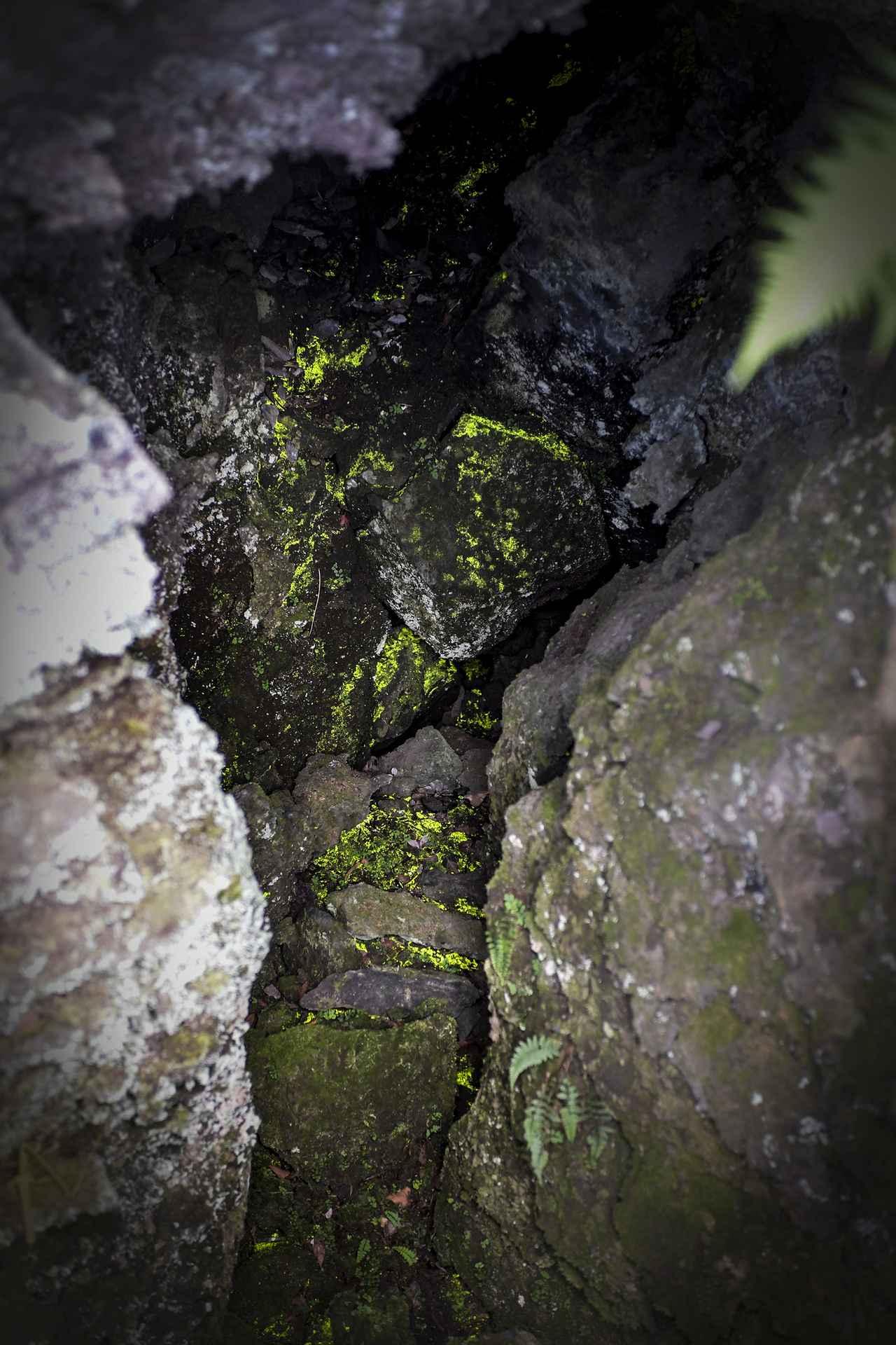 画像6: 今回の旅の目的地、鬼押出し園に到着!