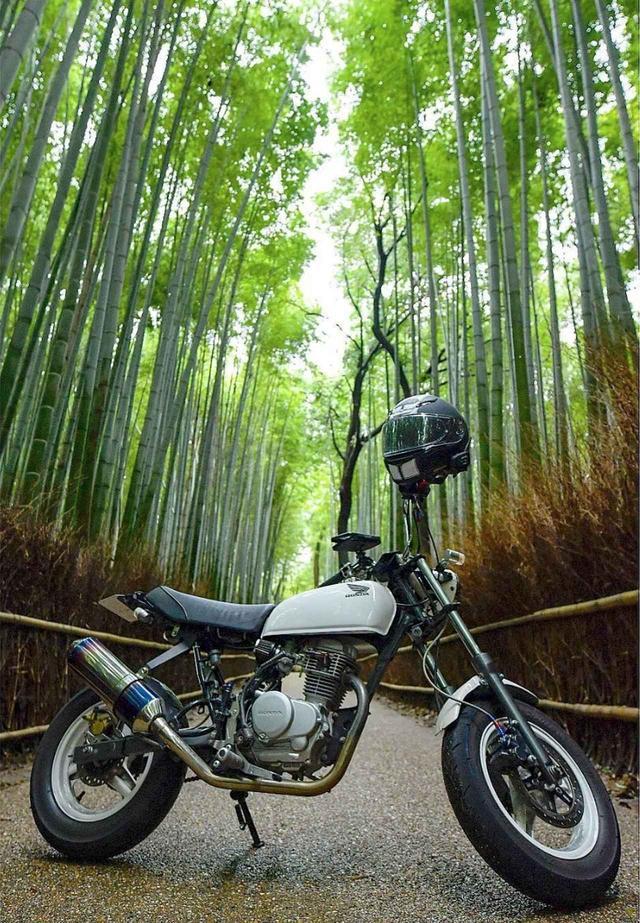 画像: 美しすぎる!自然×バイクショットをご紹介。【リトホンインスタ部vol.33】 - A Little Honda