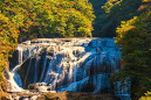 画像: 袋田の滝
