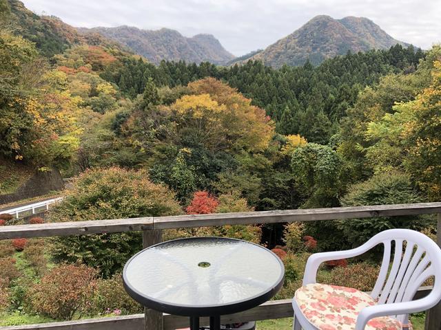 画像3: Cafe遊森歩でまったりお昼ご飯