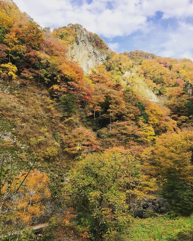 画像6: 今度は本当に袋田の滝へ!