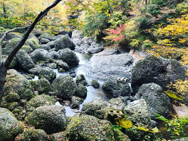 画像5: 今度は本当に袋田の滝へ!