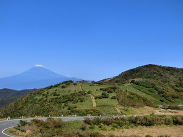 画像: 伊豆市 観光情報 特設サイト