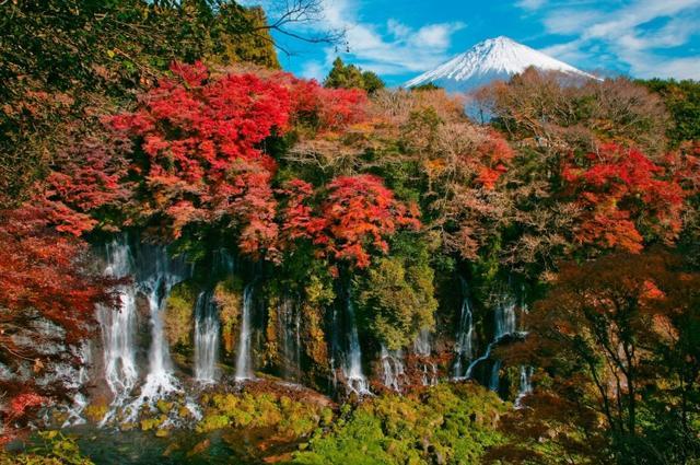 画像: 白糸の滝 | 静岡県富士宮市
