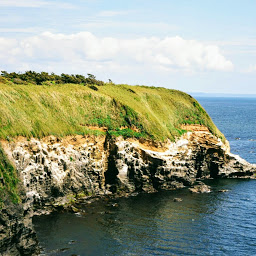 画像: 城ケ島