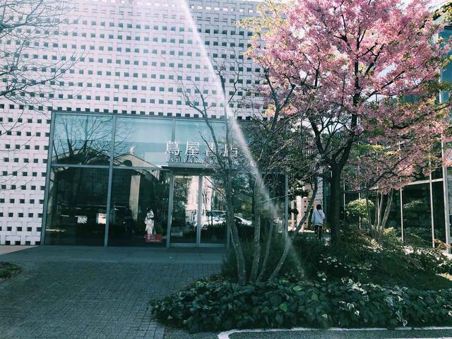 画像: これは春に撮影しました。桜が綺麗に咲いていました。