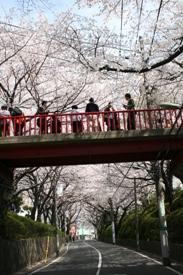 画像1: 大田区公式サイトより www.city.ota.tokyo.jp