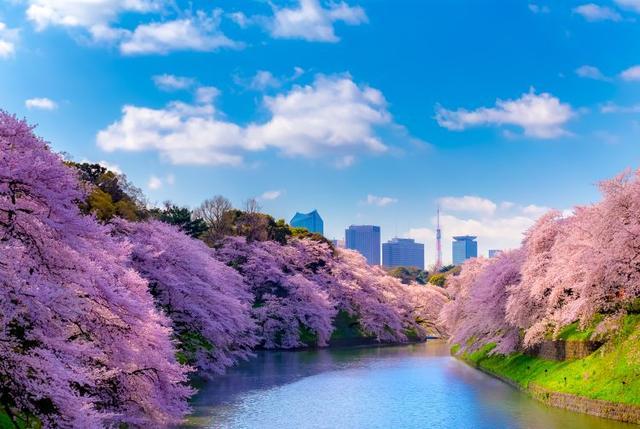 画像: 東京の観光公式サイトより 東京都千代田区九段南2丁目 www.gotokyo.org