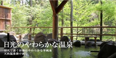 画像: 日光・まなかの森