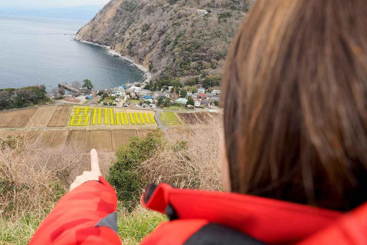 画像2: 菜の花畑を見に煌めきの丘へむかいます!