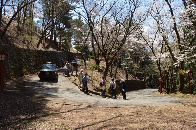 画像: 新倉山浅間神社側からは、林間を抜けるうねうね道もあります。普段は車で上がることもできるのかな?