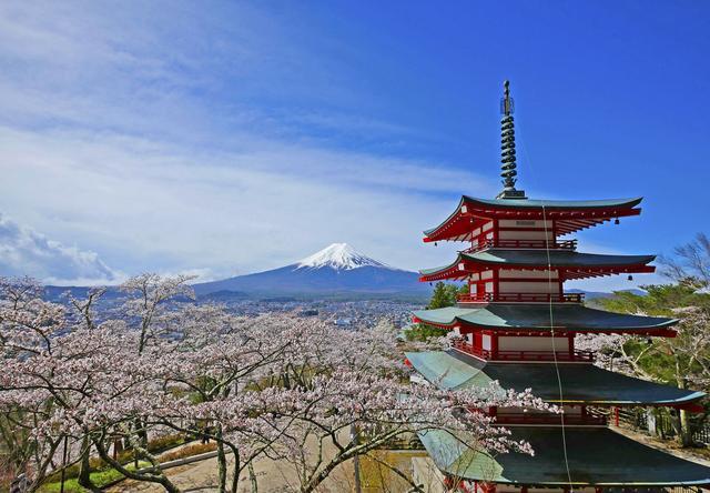 画像: 新倉山浅間公園桜まつり トップページ