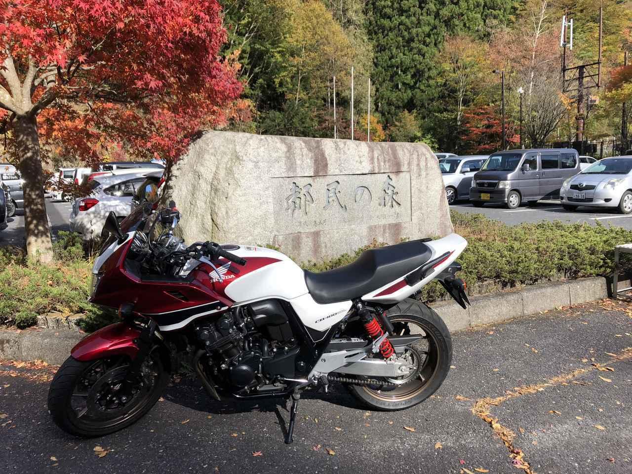 画像: 都民の森まで奥多摩ツーリング!/声優・西田望見の「休日おすそわけ」 - A Little Honda