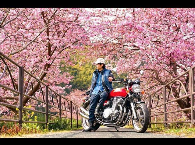 """画像: """"桜×バイク""""はこう撮れ!【リトホンインスタ部vol.51】 - A Little Honda"""