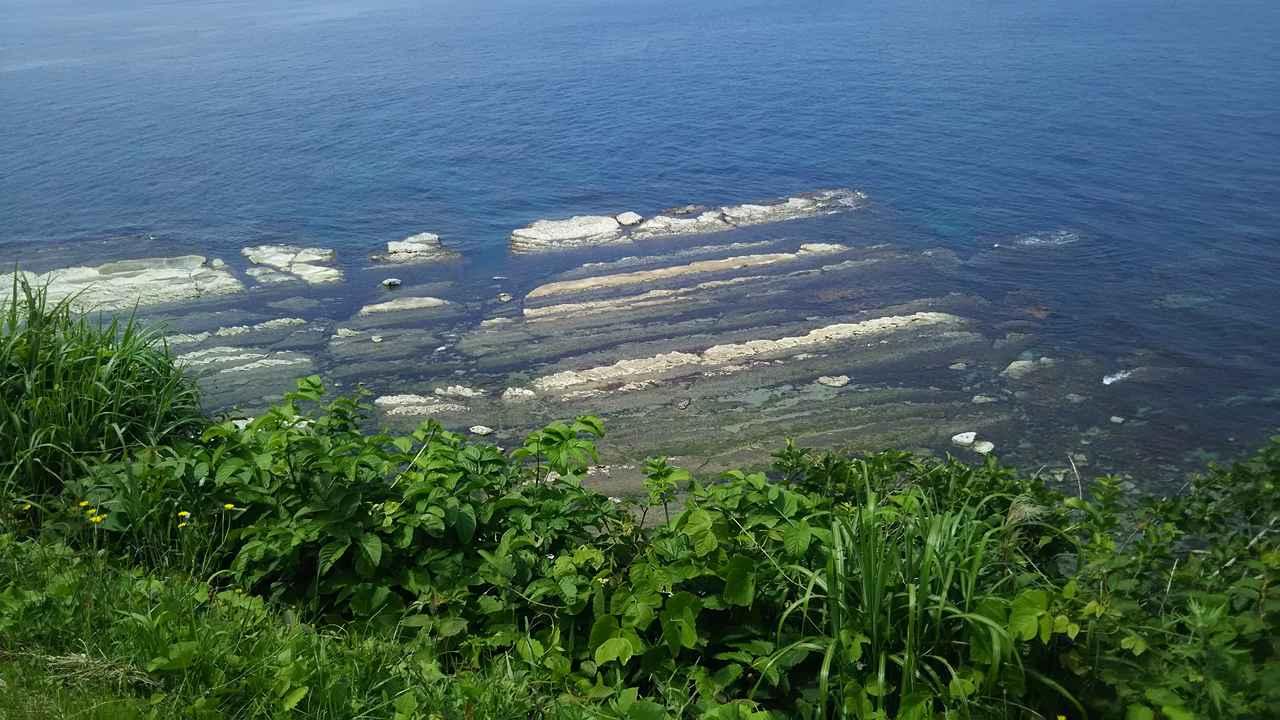 画像: 崖下を見下ろせば、洗濯板状の岩が。「千畳敷」と呼ばれる独特の地形なのだそうです。