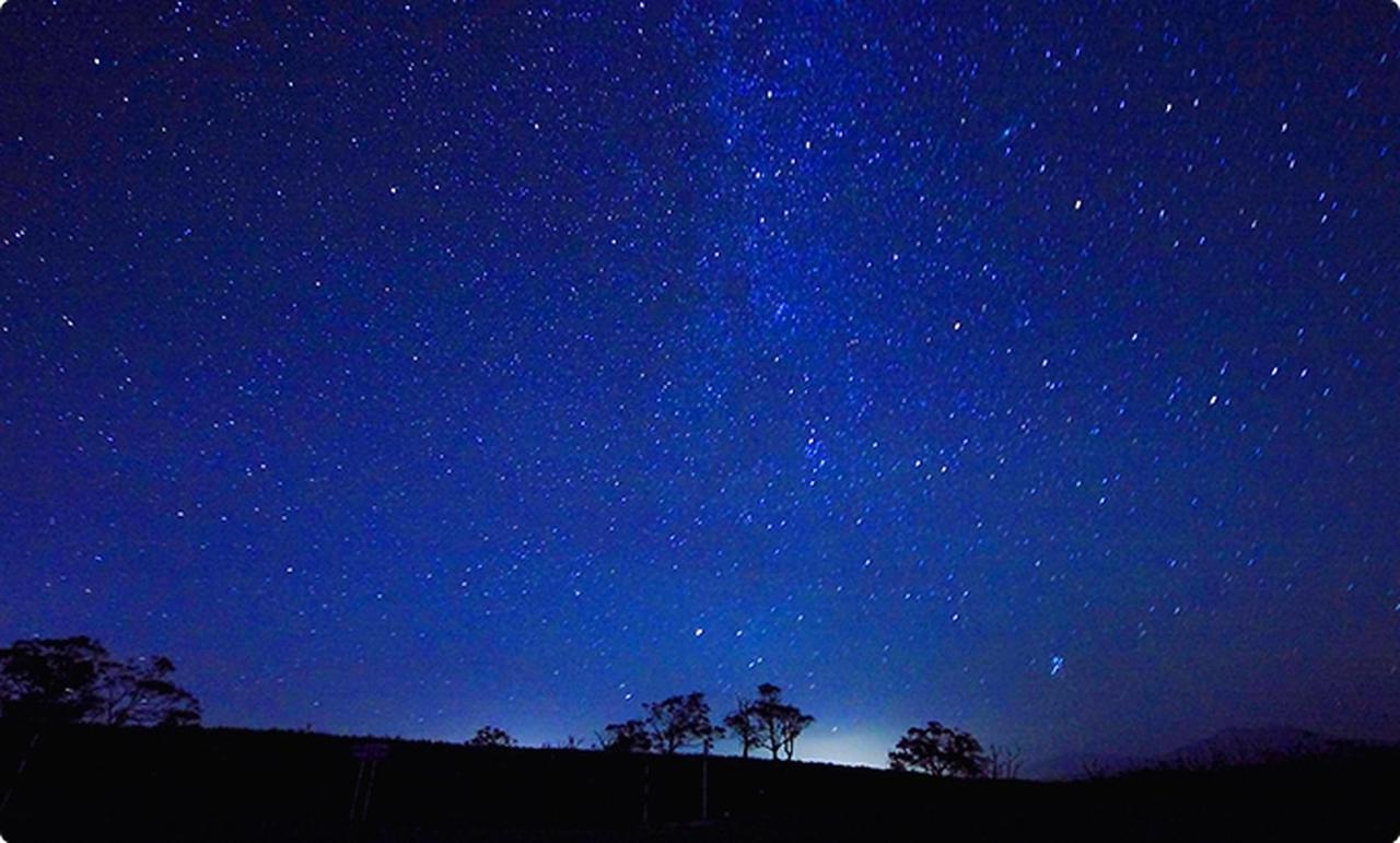 画像: 【星座図鑑】見つけ方や誰かに教えたくなる星の話 | Hondaキャンプ