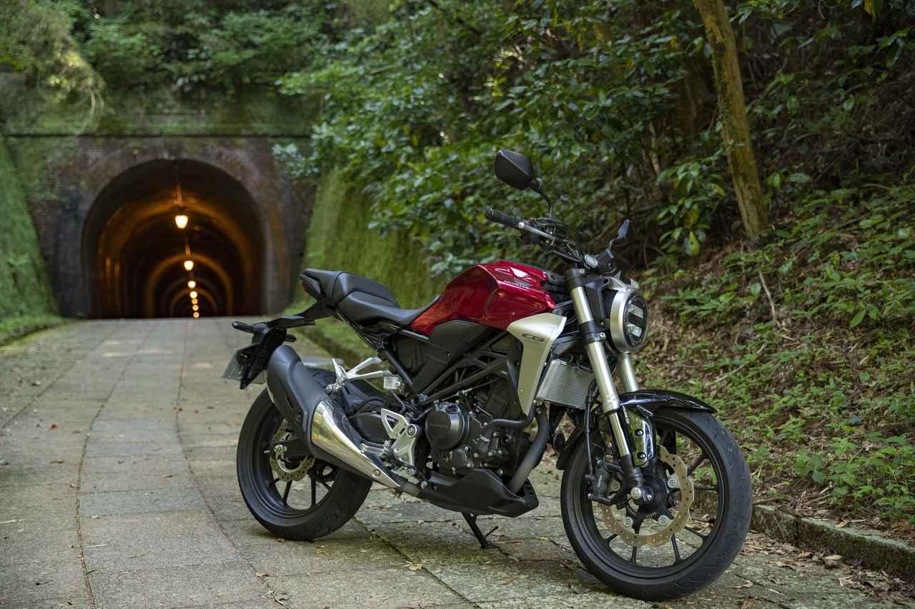 画像1: 明治のトンネルに到着!