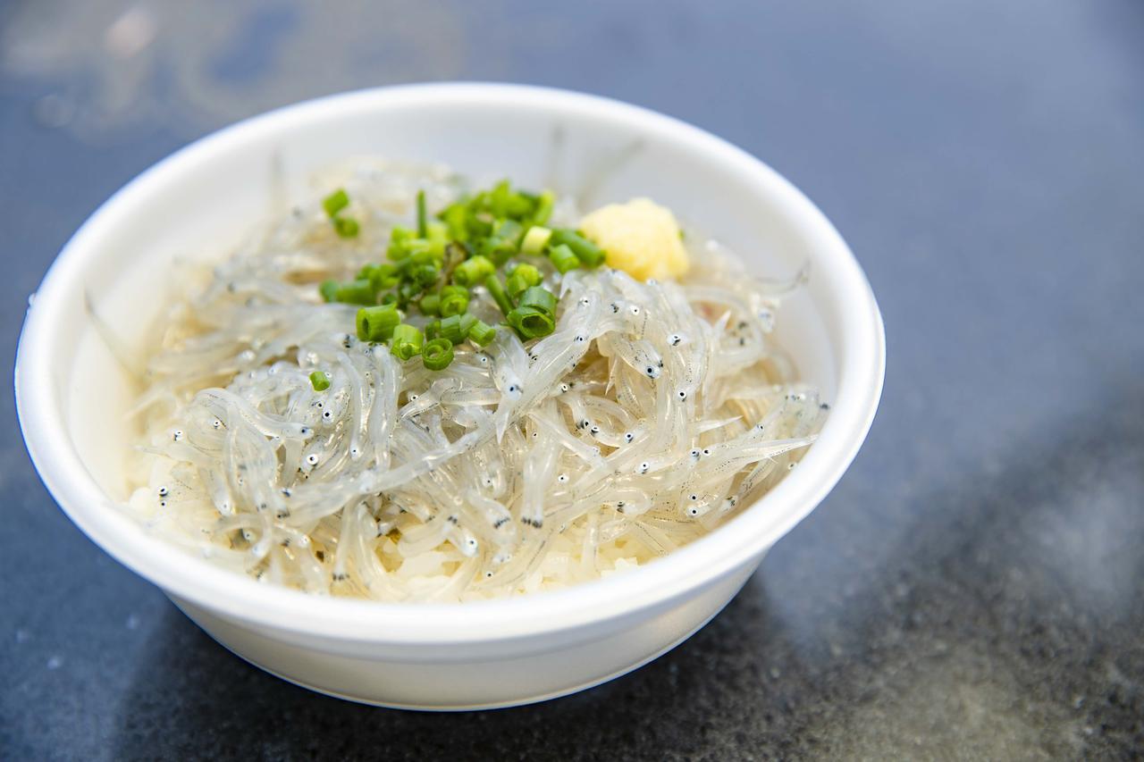 画像3: 港で食べる海鮮丼