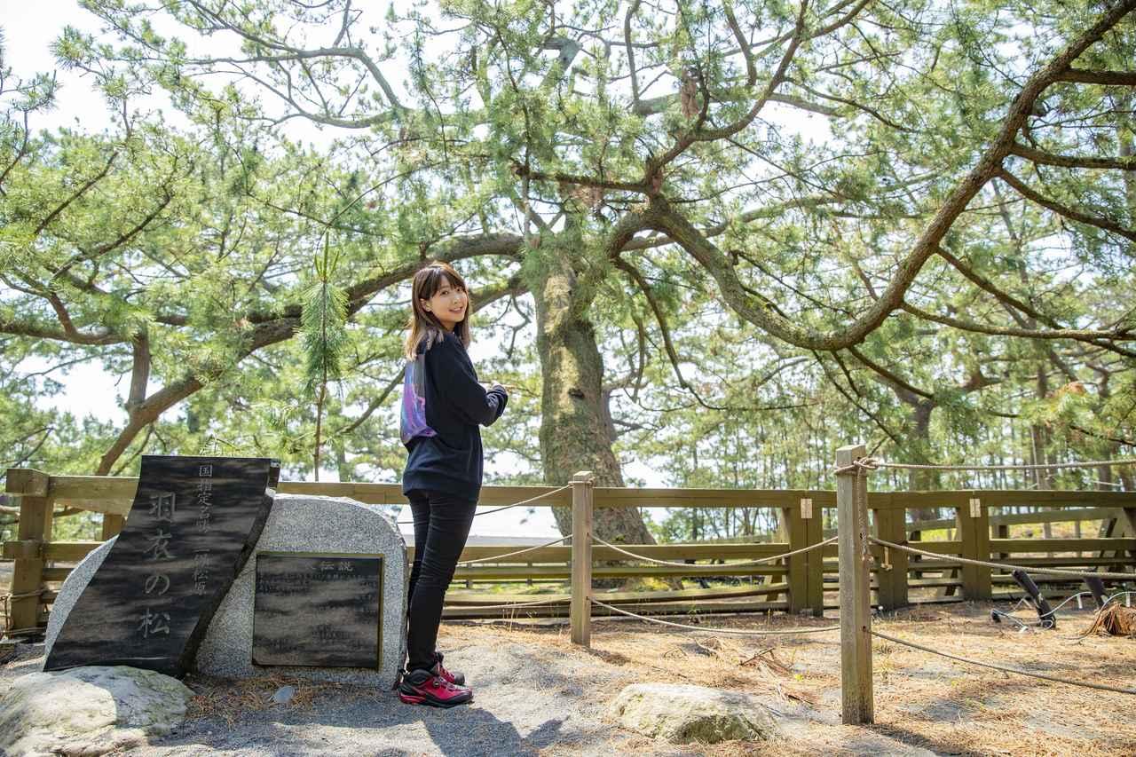 画像3: 三保の松原に到着