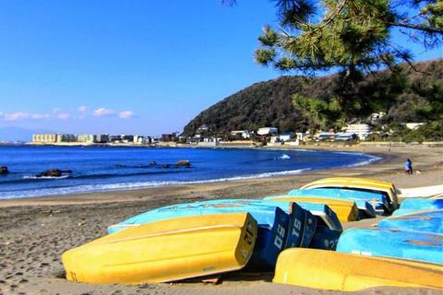 画像: www.town.hayama.lg.jp