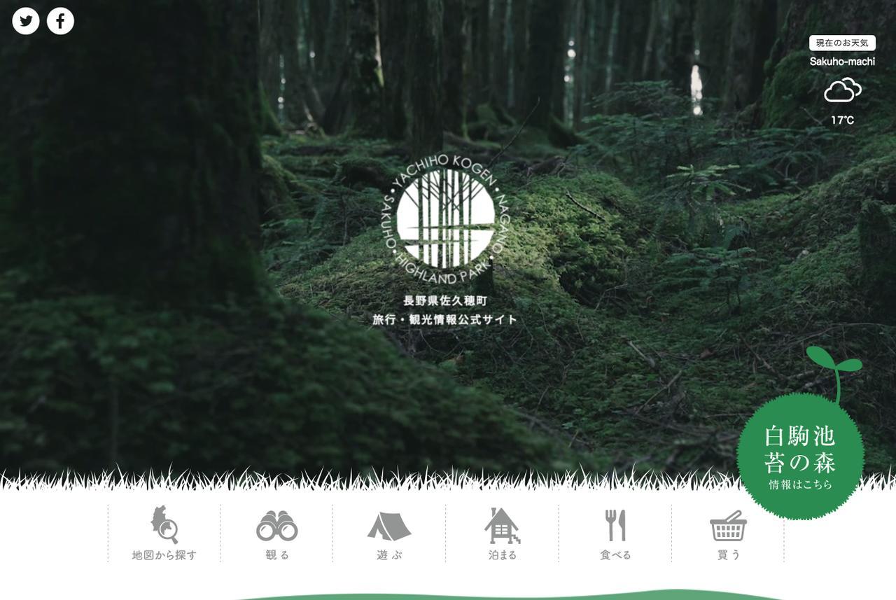 画像: 白駒の池・苔と原生林   長野県佐久穂町観光協会公式ホームページ 旅行・観光情報