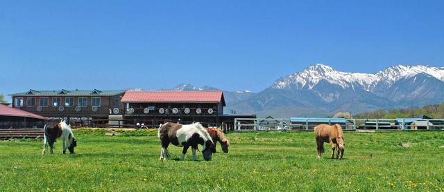 画像: 八ヶ岳 野辺山高原|滝沢牧場