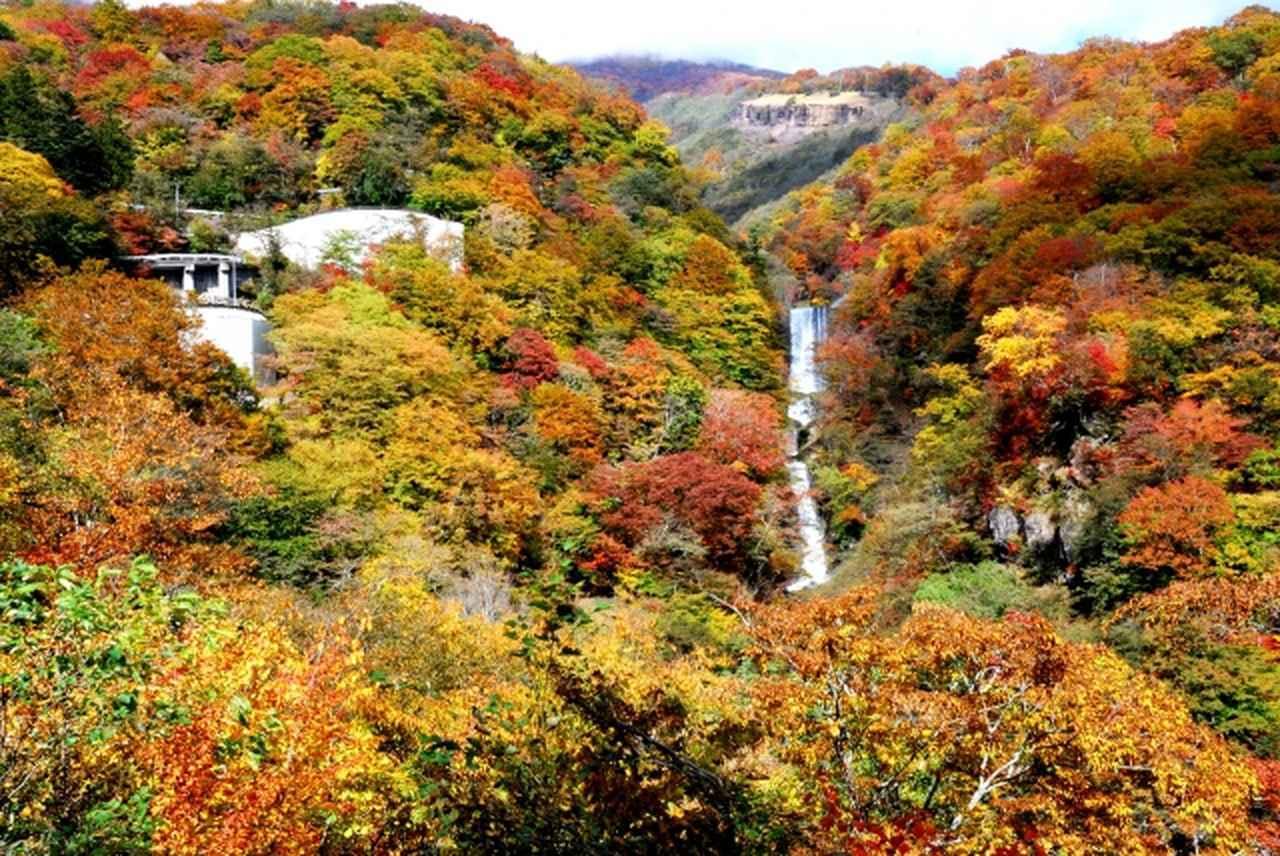 画像: いろは坂 www.photo-ac.com