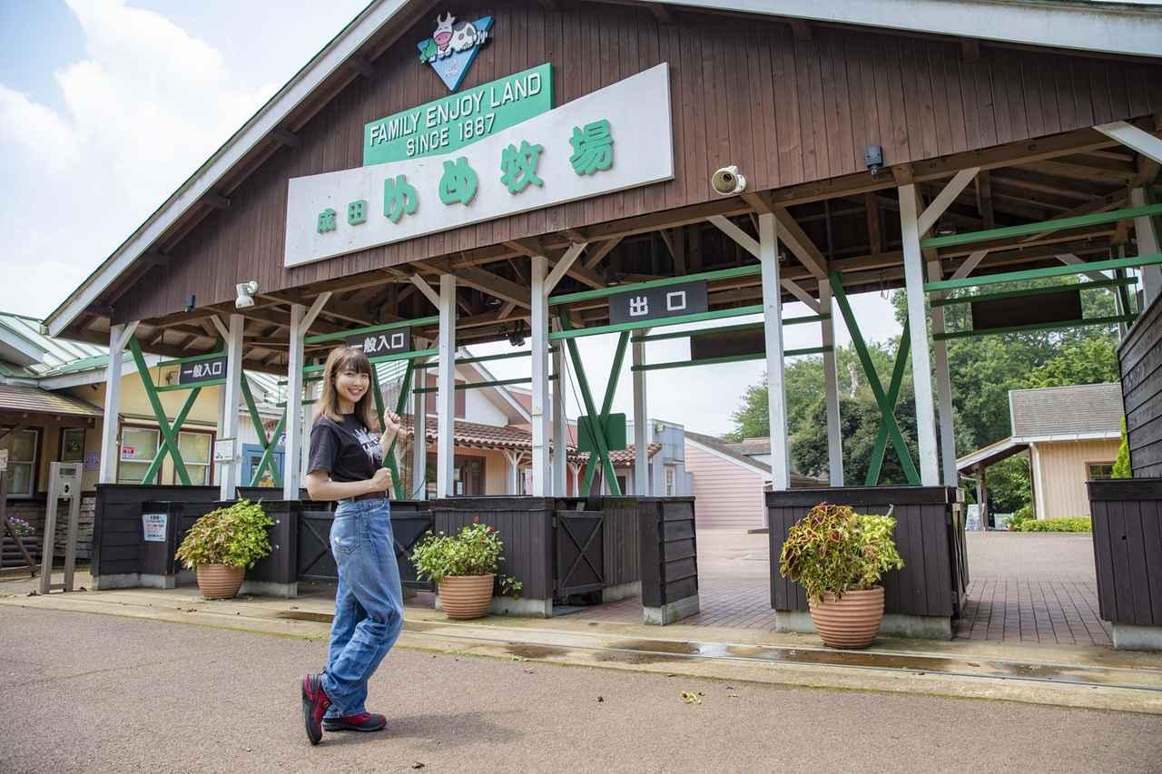 画像3: 成田ゆめ牧場に到着!